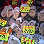 Tsukiji Food- Fresh Oyster