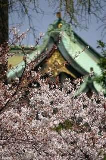 Ouji shrine