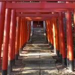 The Tokyo Ten Shrines (Tokyo Jissha, 東京十社)