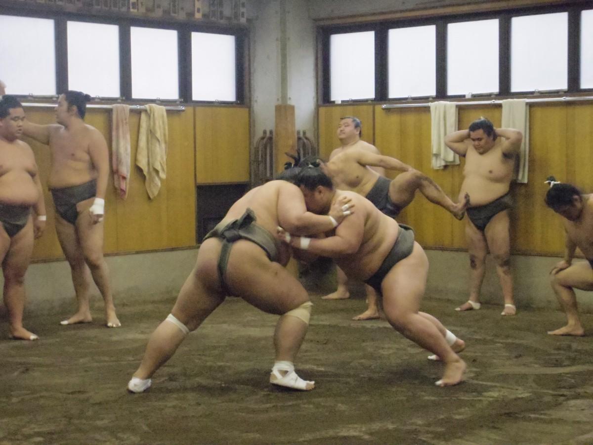 Sumo stable practice