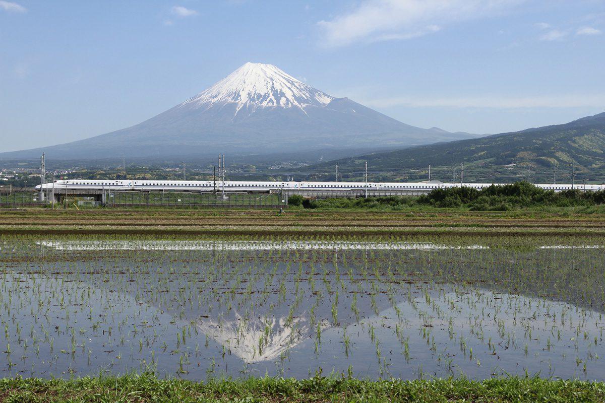 Mount Fuji Shinkansen with rice-fields