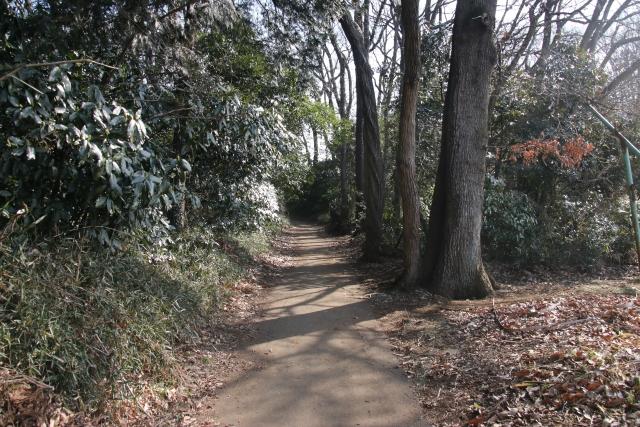 totoro forest sayama hills