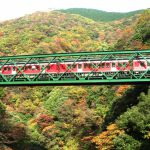 Beautiful views of Autumn Leaves,  One Day Trip from Tokyo: Kamakura, Hakone, Fuji Five Lakes, Nikko and inner Tokyo