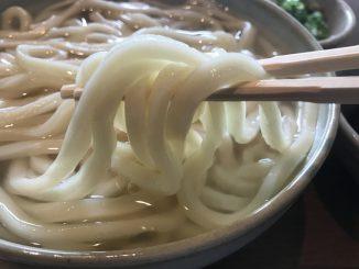 Kamachiku Udon Noodles
