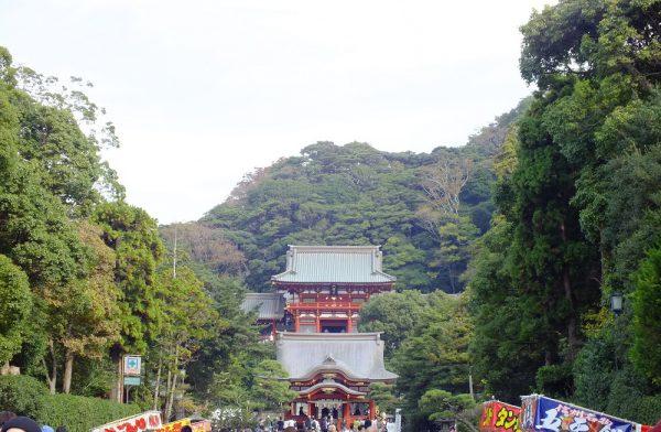 hachimangu2