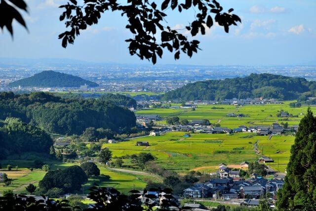 Nara Asuka