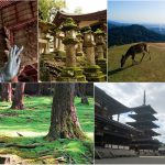 2 Days Suggested Itinerary in Nara
