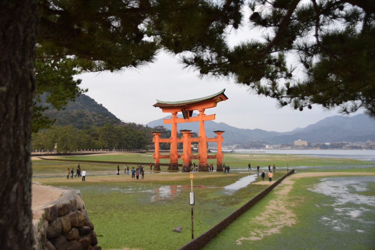 Miyajima Shrine Hiroshima