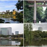 The best Green spots in Tokyo – if you want to feel relax