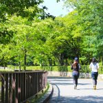 Tokyo's Top 5 spots for Runners