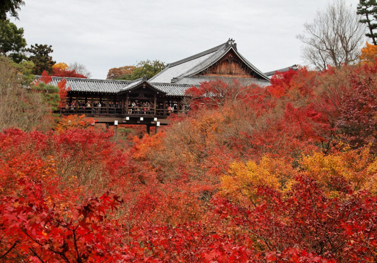 Tofukuji Temple autumn foliage