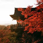 10 Best Places To See Autumn Leaves In Kyoto ~ Discover The Beautiful World Of Red Leaves