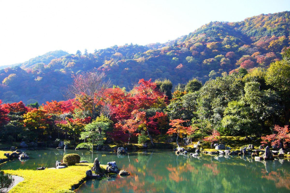 Tenryu Temple autumn foliage