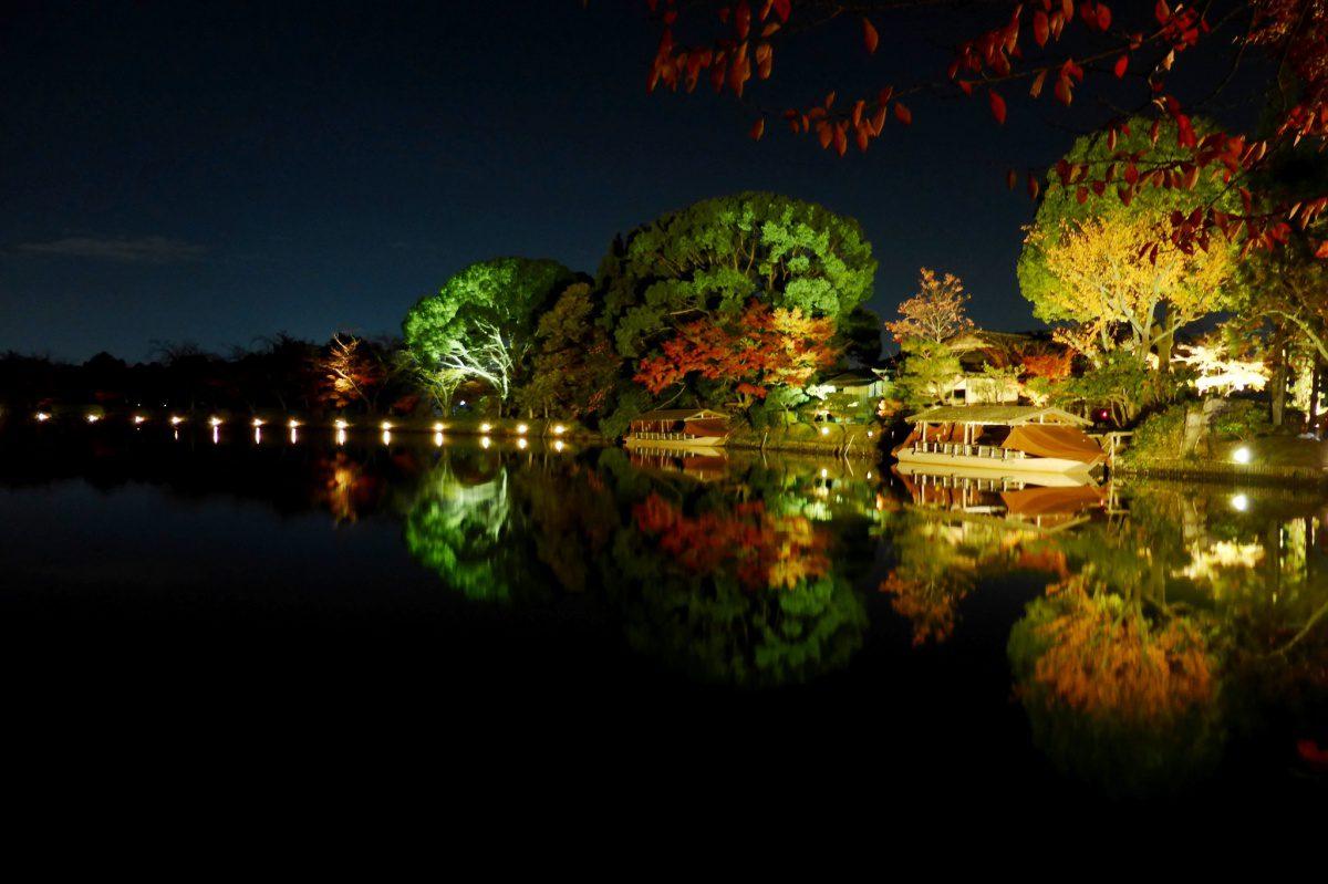 Daikaku-ji Temple at night autumn foliage