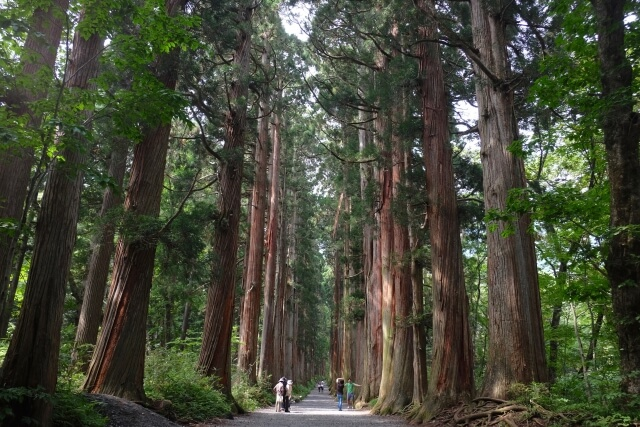 Forrest Nagano