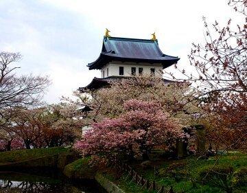 Sakura Matsumae Park /Hokkaido