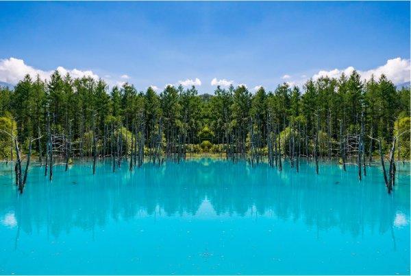 Shirogane Blue Pond Aoiike