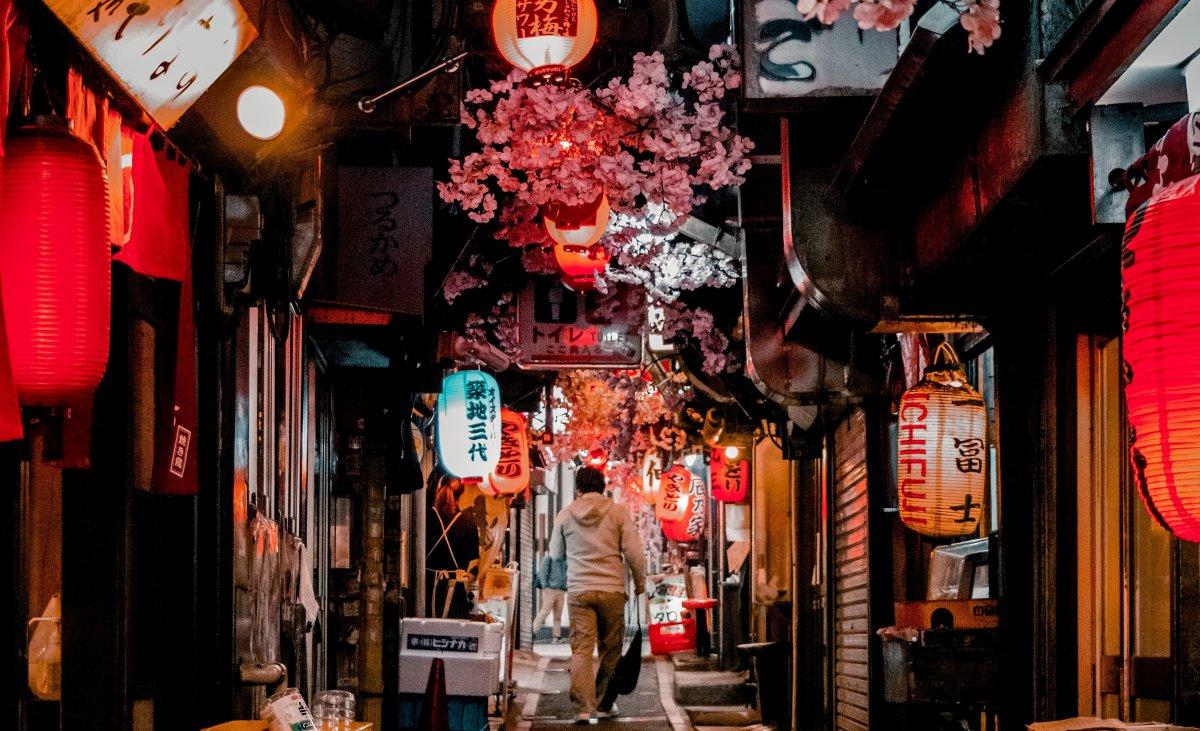 Omoide Yokocho Izakaya Alley Tokyo