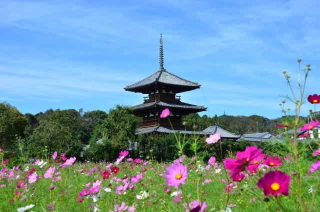 法隆寺 Horyuji temple
