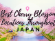 Best cherry blossom locations Japan