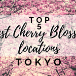 Top 5 Best Cherry Blossom Viewing Locations in Tokyo