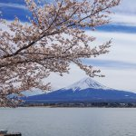 Travelling Around Mount Fuji in Yamanashi and Shizuoka Prefecture