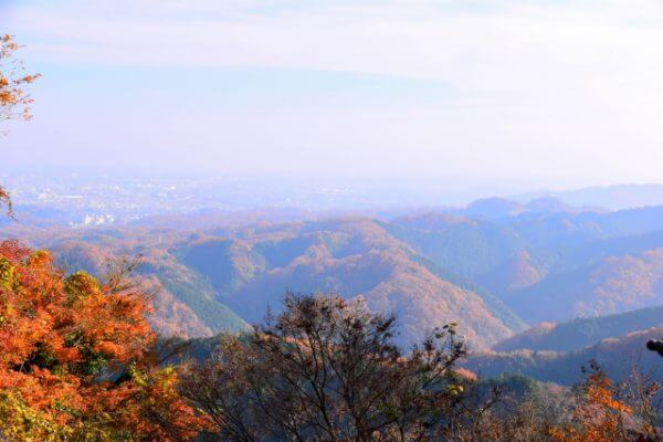 Mount Takao Autumn Colours