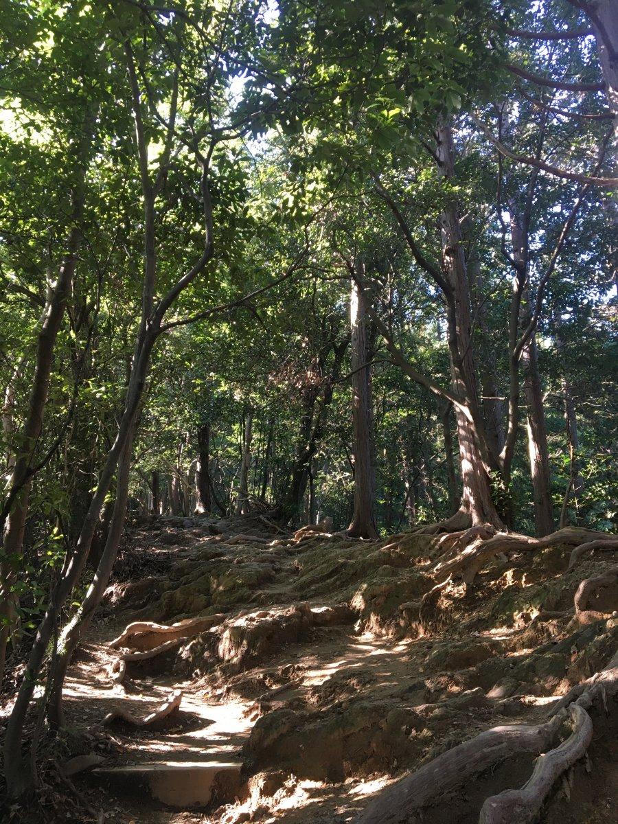 Takao Inariyama Trail
