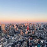 8 Best Places to See Incredible Views of the Tokyo Skyline