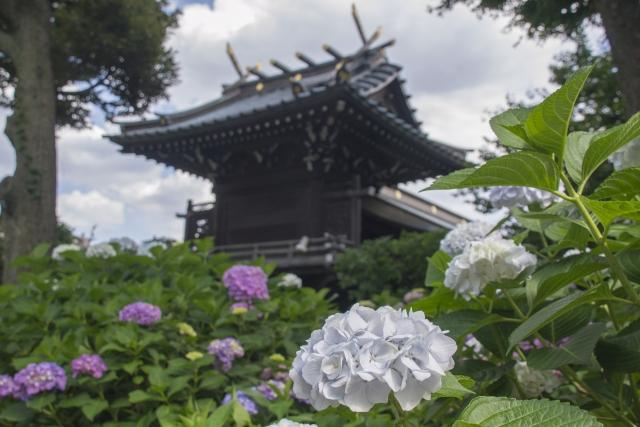 hakusan shrine tokyo