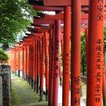 Pilgrimage in Tokyo: Visit The 10 Tokyo Jissha! [Shinto Shrines]