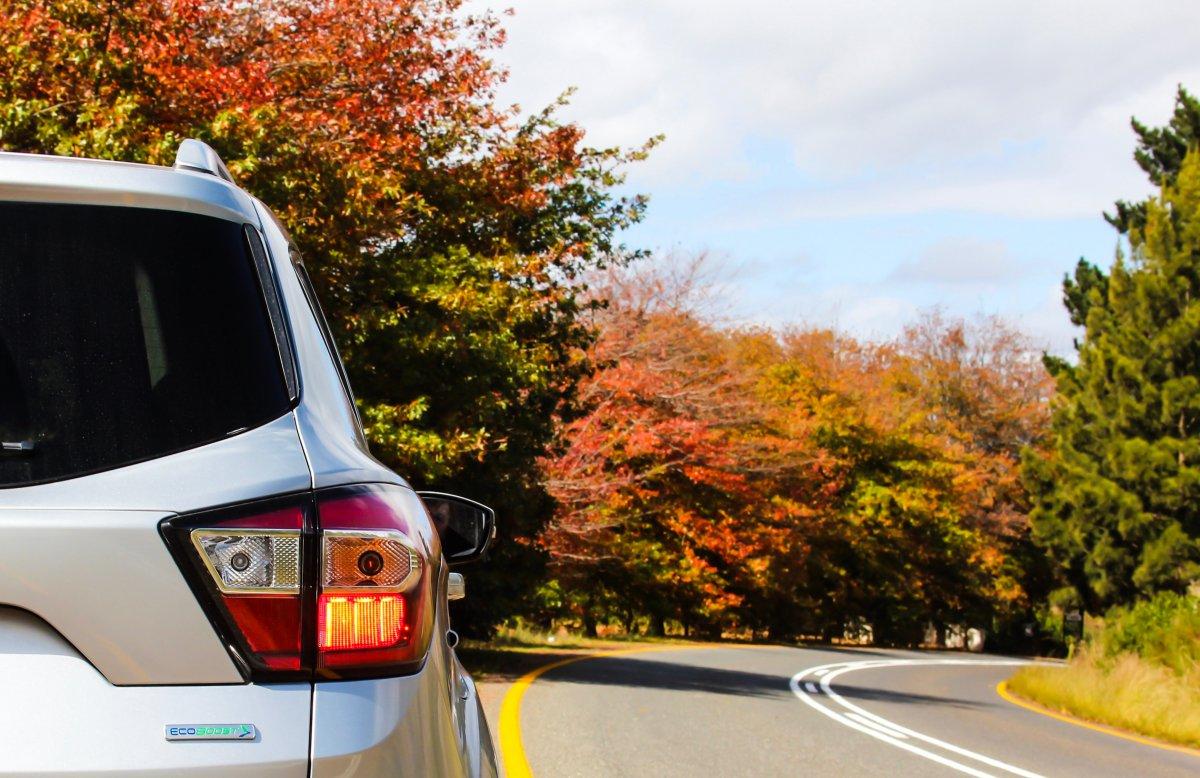 Road trip car autumn foliage