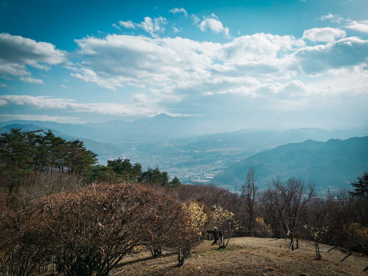 Saitama view from Hodosan shrine