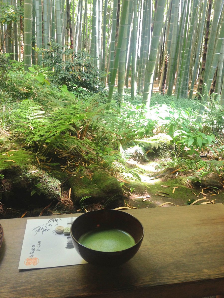 Matcha Bamboo forrest Kamakura
