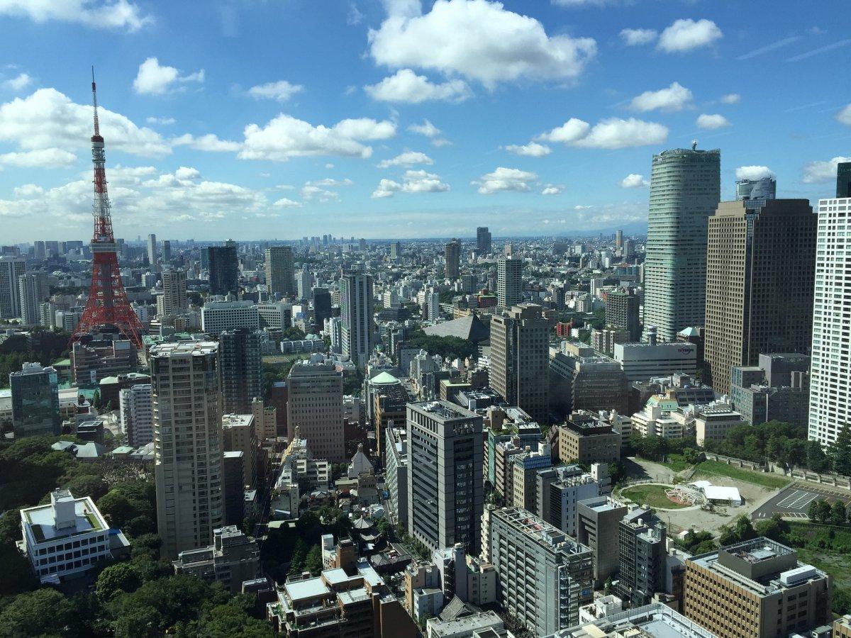 Tokyo Tower - panoramic view