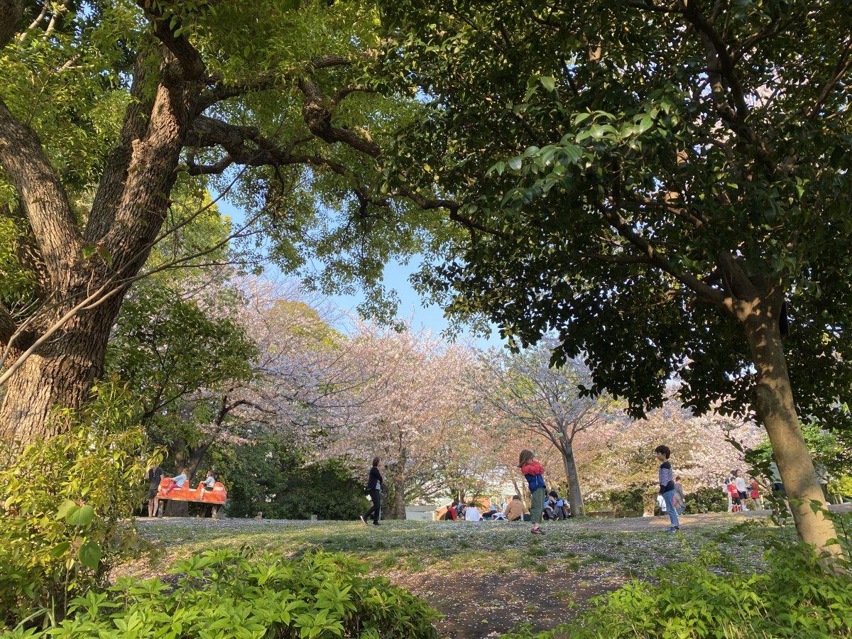 Saigoyama Park Daikanyama
