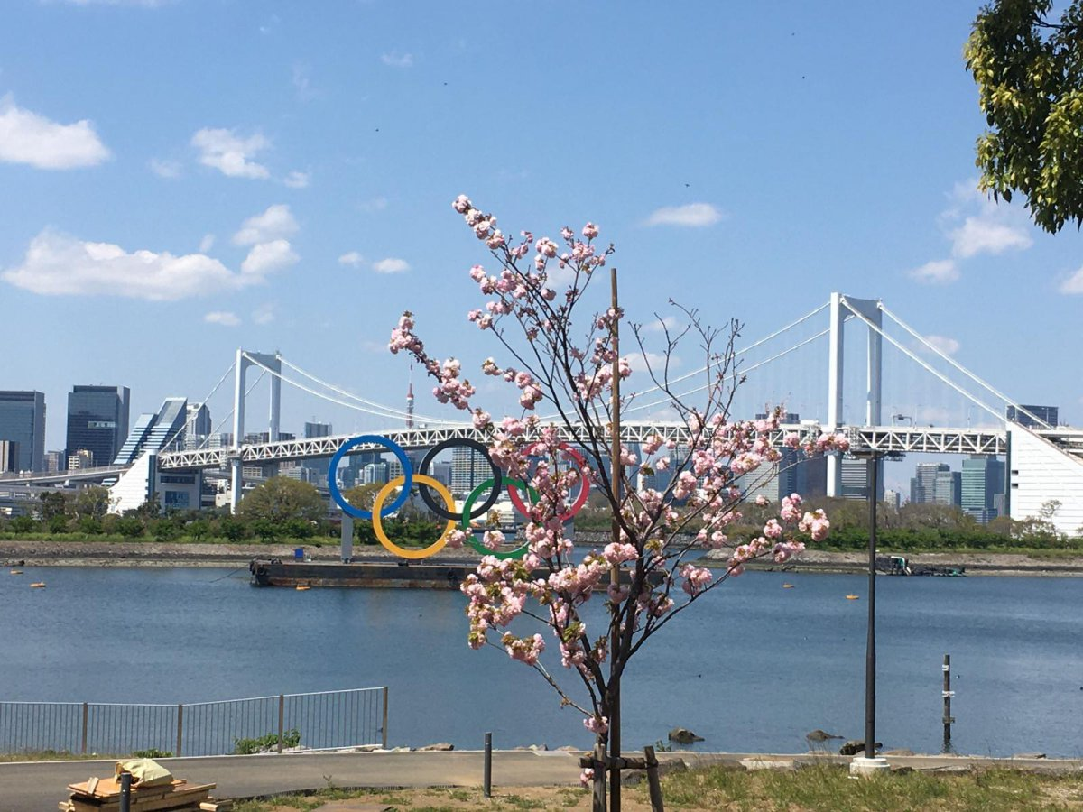 Odaiba, Rainbow bridge, Olympic Rings