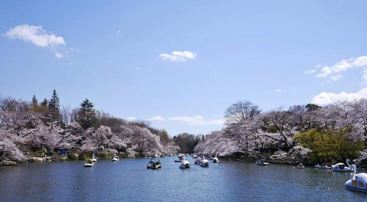 Inokashira Park Kichijoji