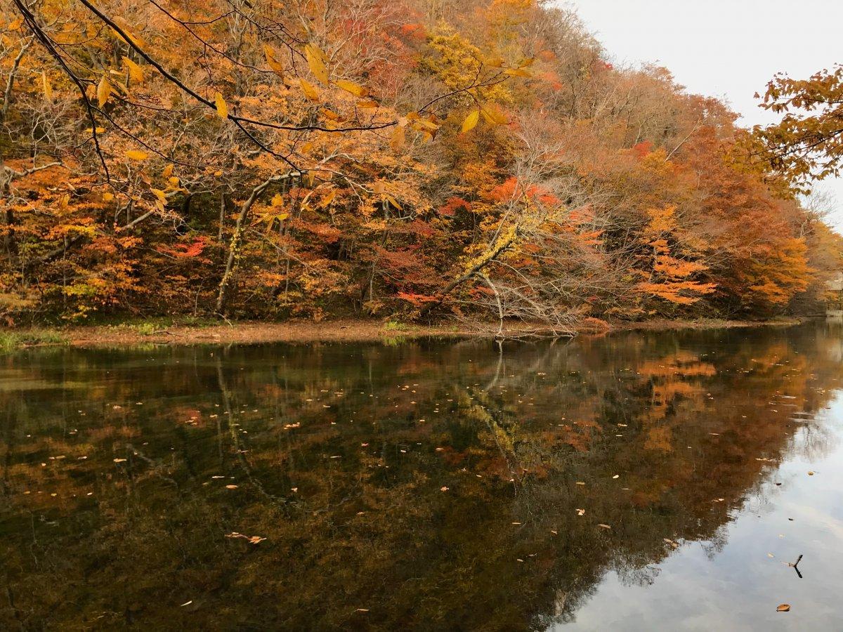 Lac Towada Aomori