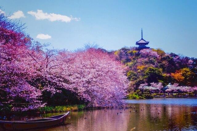 Sankeien Kanagawa