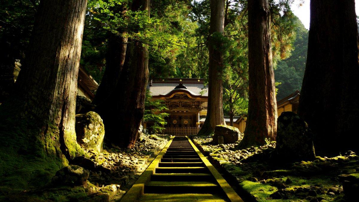 Eihei temple Fukui
