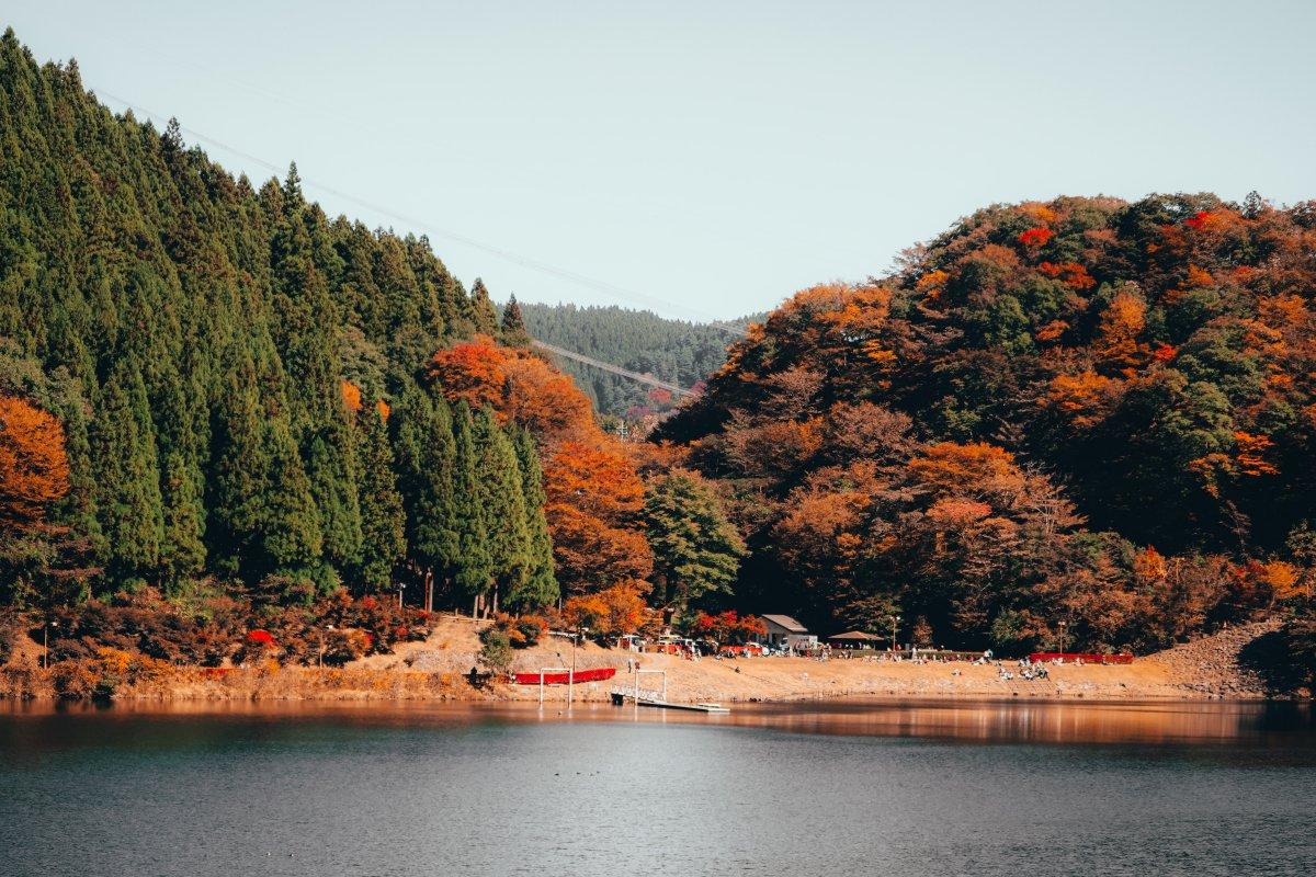 Gunma autumn foliage