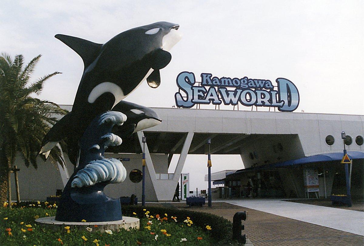 Kamogawa aquarium Chiba