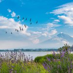 Best Places To Visit In Yamanashi