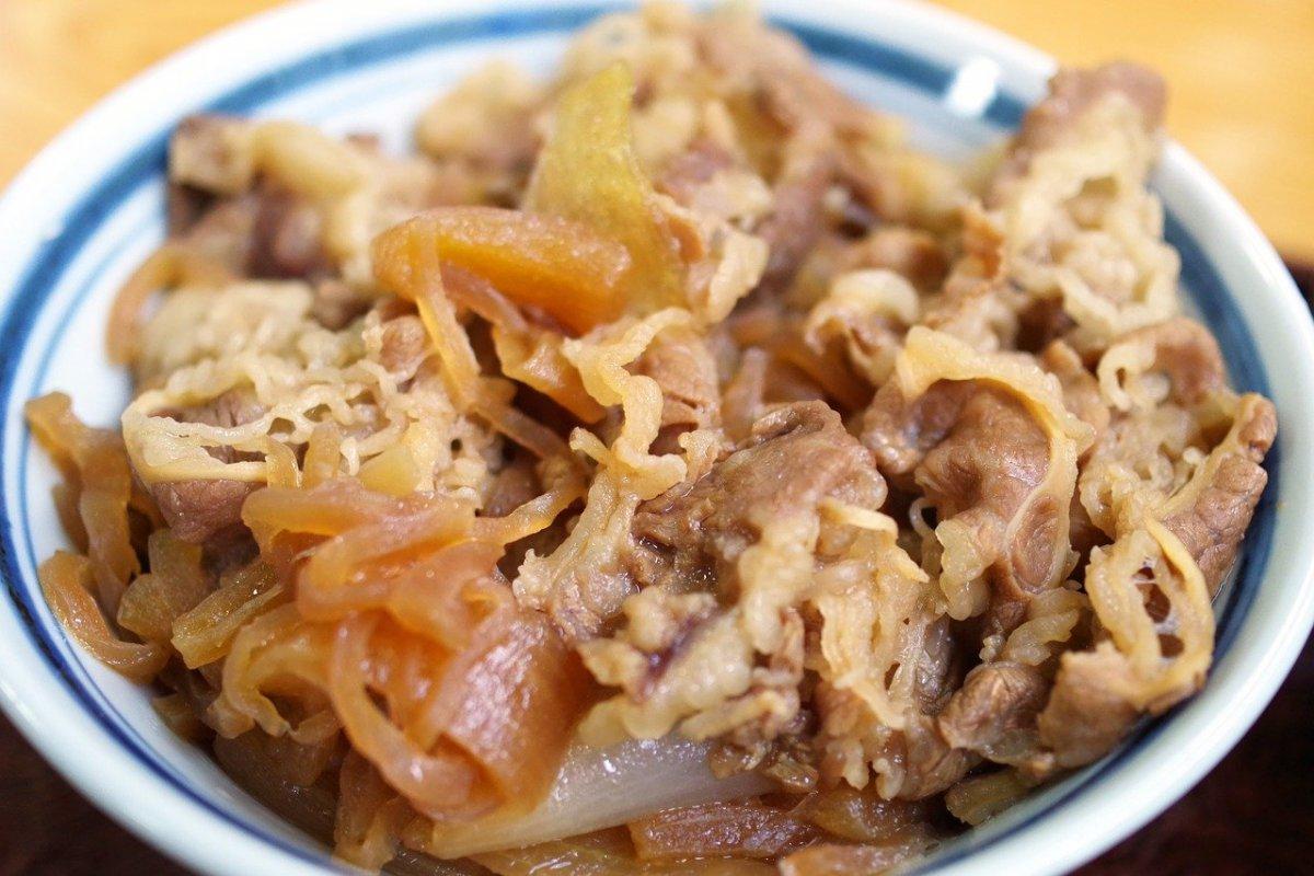 beef bowl Gyudon