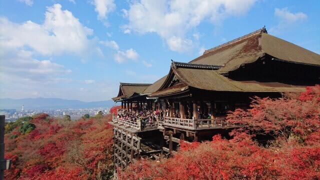 Kiyomizudera temple autumn
