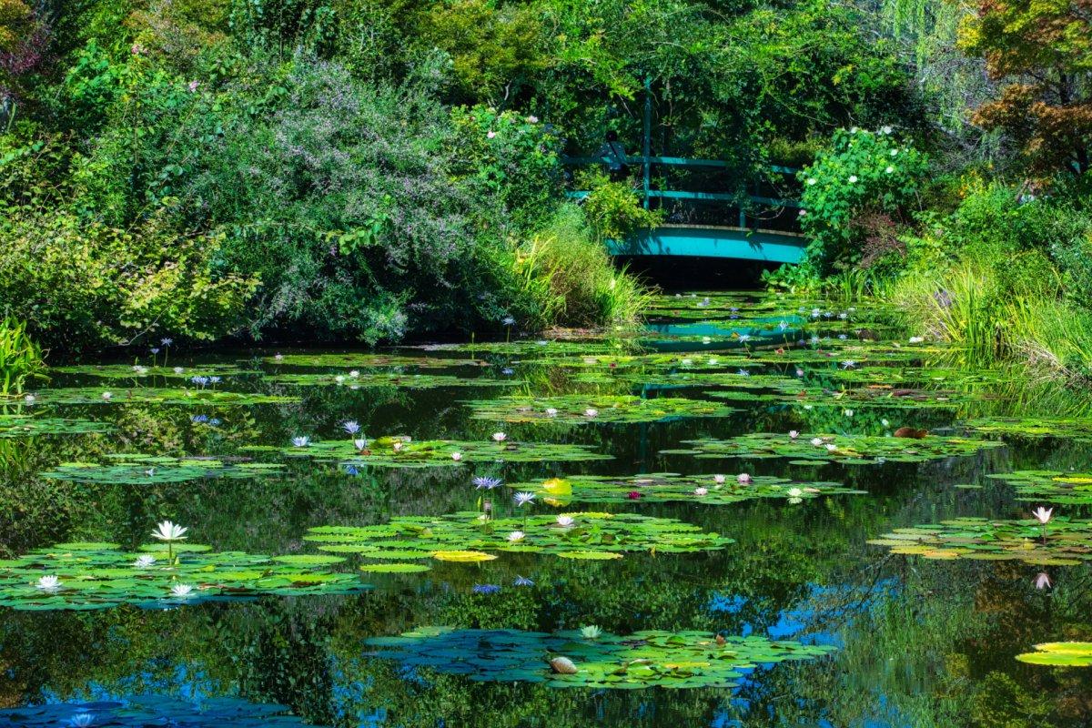 Monet's Garden Marmottan in Kitagawa Village