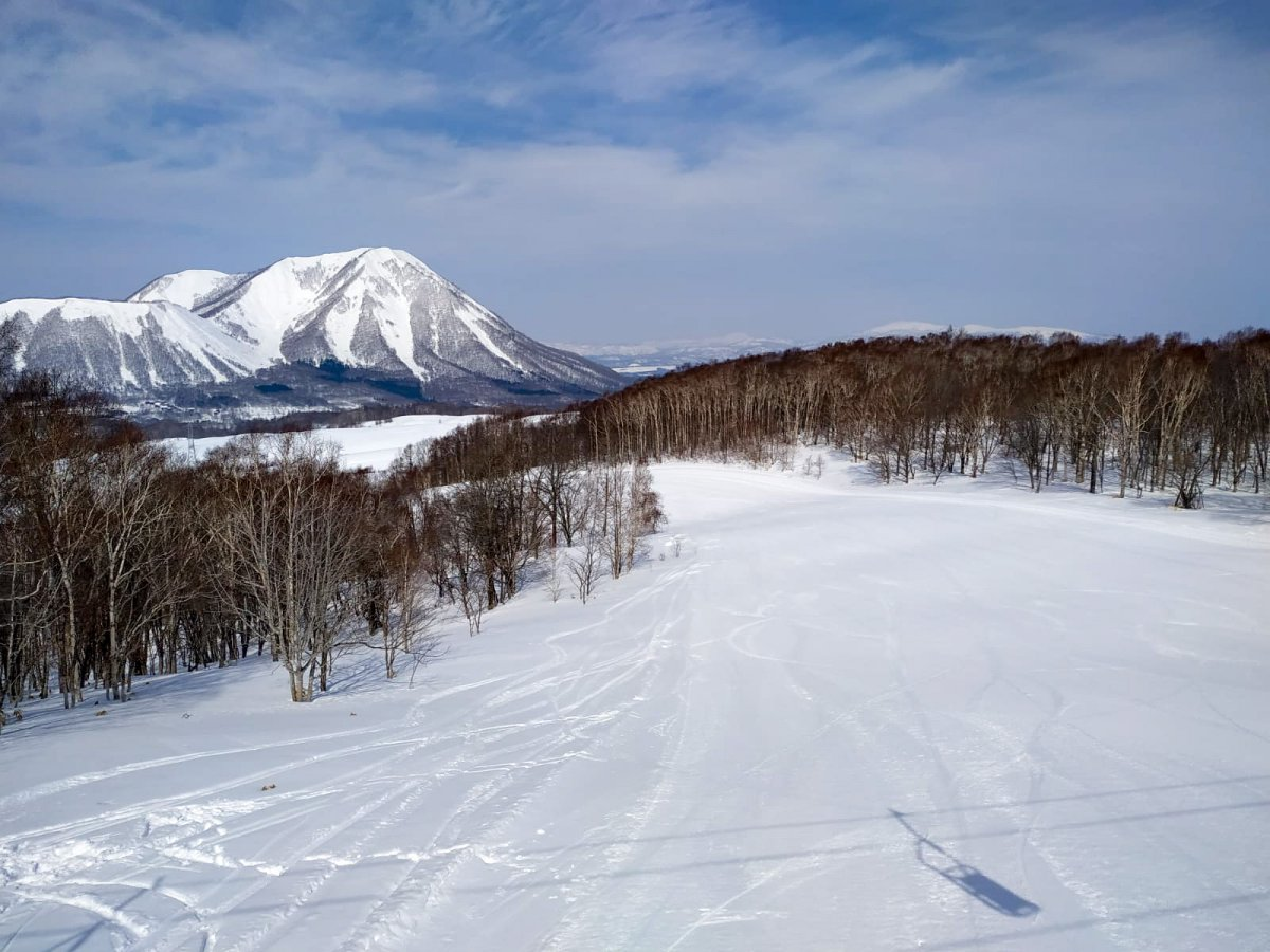 Snow in Niseko