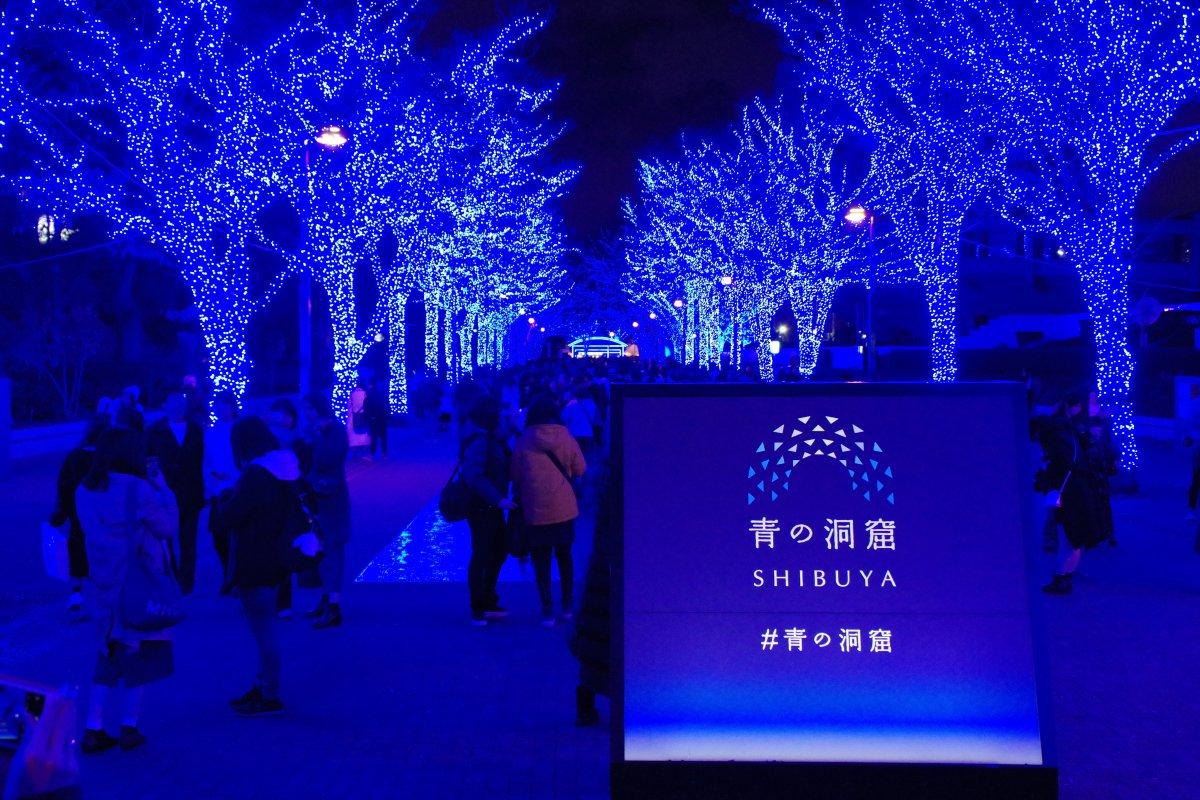 Shibuya Blue Cave Christmas