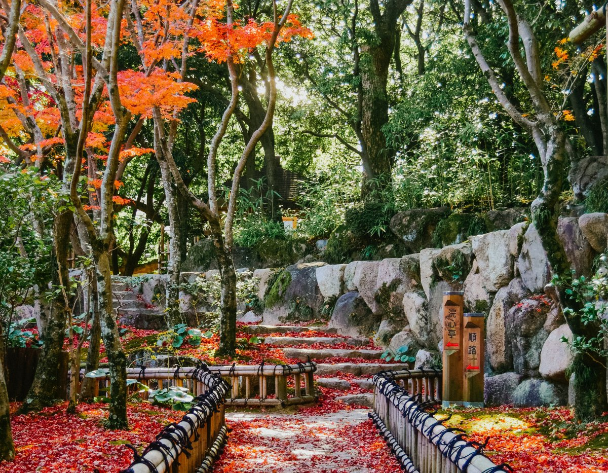 the best autumn destinations in Japan